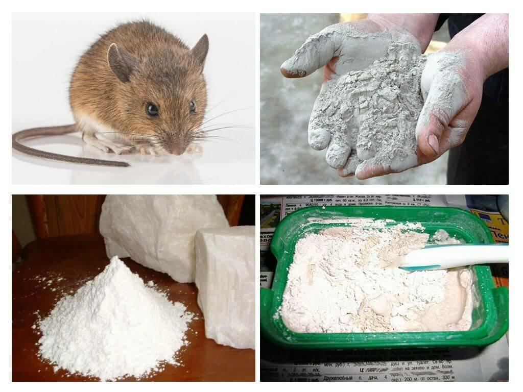 Смеси из химии и продуктов